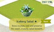 Iceberg Salad 1star.JPG