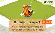 Butterfly Honey 2star.JPG