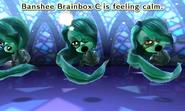Bansheebrainbox-calm