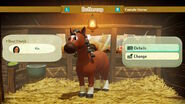Buttercup the horse profile