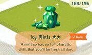 Icy mints vrare.jpeg