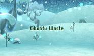 Ghontu Waste
