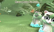 Brave Mole distracted