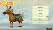 Horse-customization