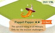 Puppet Pepper 2star.JPG