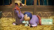 Horse sleep continue
