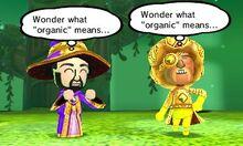 Organic event.jpg