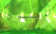Strange Grove
