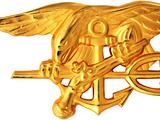 William Owens (Navy SEAL)