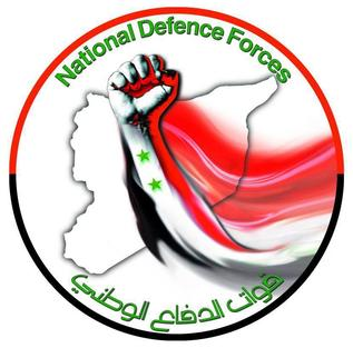 National Defence Force (Syria)