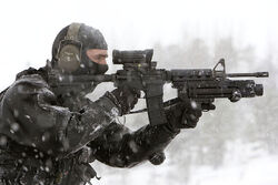 Diemaco C8 carabine with Elcan C79 sight and grenade launcher.jpg