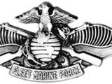 Fleet Marine Force