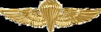 USN & USMC Parachutist Badge