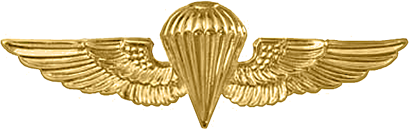 Naval Special Operations Group