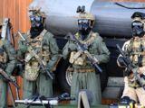 Tactical assault group