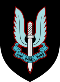 The SAS badge