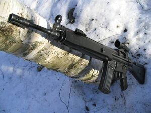 HK33A2 Flickr (yet another finn).jpg