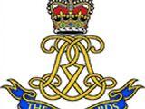 Life Guards (United Kingdom)