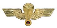 Ecuador basic wings