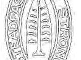 13th Field Artillery Brigade (United States)