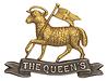 6th (Bermondsey) Battalion, The Queen's Royal West Surrey Regiment