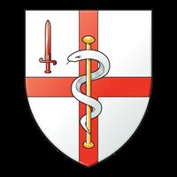 256 (City of London) Field Hospital