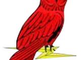 13th Signal Regiment (United Kingdom)