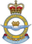 Royal Auxiliary Air Force badge