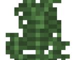 Large Fern