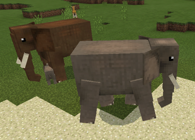 Elephant Wildlife Savanna Minecraft Mobs Wiki Fandom Thousands of new elephant png image resources are added every day. elephant wildlife savanna minecraft