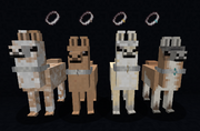 Cloth collars on llamas.png