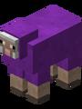 Purplesheep