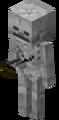 SkeletonNew