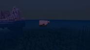 Polar Bears and BoatZ