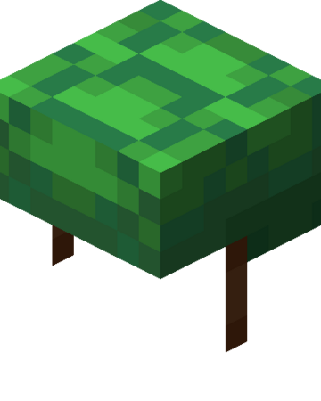 Turtle Shell   Minecraft Wiki   Fandom