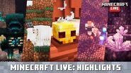 Minecraft Live Update Highlights