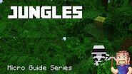 Jungle Biomes - Minecraft Micro Guide