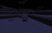 Polar Bear In The Night