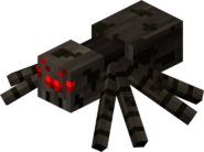 Agresywny pająk