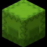 Hellgrüne Shulkerkiste.png