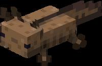 Brauner Axolotl.png