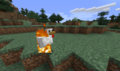 Brennendes Huhn.png