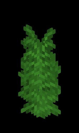 Dschungelfarn Groß.png