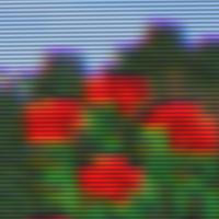 Shader-Ntsc-Detail.png