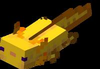 Goldener Axolotl schwimmt.png