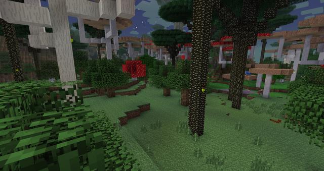 Ein Pilzwald