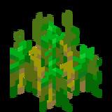 Weizenpflanzen6.png