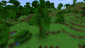 Baum Tropenbaum.png