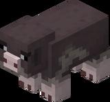 Rosafuß-Schwein (Earth).png