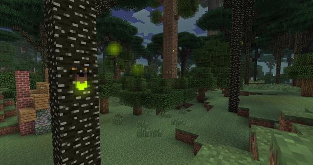 Der Twilight Forest